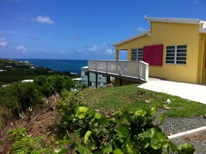 cotton valley 231 - Caribbean Life