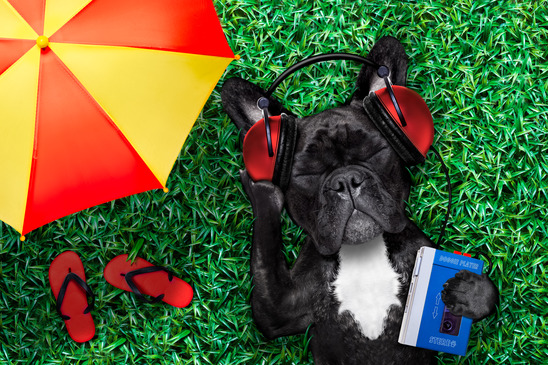 french bulldog dog listening to oldies with headphones or earphones from a retro cassette tape recorder, relaxing with eyes closed, lying on grass at the park or meadow, under umbrella and flip flops